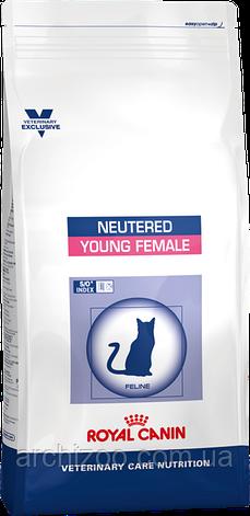 Royal Canin Young Female S/O 3,5кг для кошек с момента стерилизации до 7 лет, фото 2