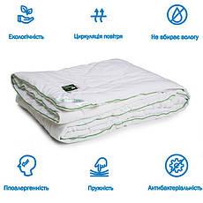Одеяло Бамбук двуспальное 172x205 демисезонное 250гр.м/кв Руно (316.52БКУ), фото 2