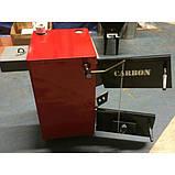 "Carbon КСТО-17,5-п ""ТАЙГА"" - котел с варочной плитой, фото 7"