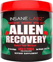 Аминокислоты Insane Labz BCAA Alien Recovery 236 грамм  (35 порций)