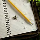 "Rite In The Rain Journal Polydura 393 - 12*18см (4 5/8""x7"") Жовтий, фото 2"