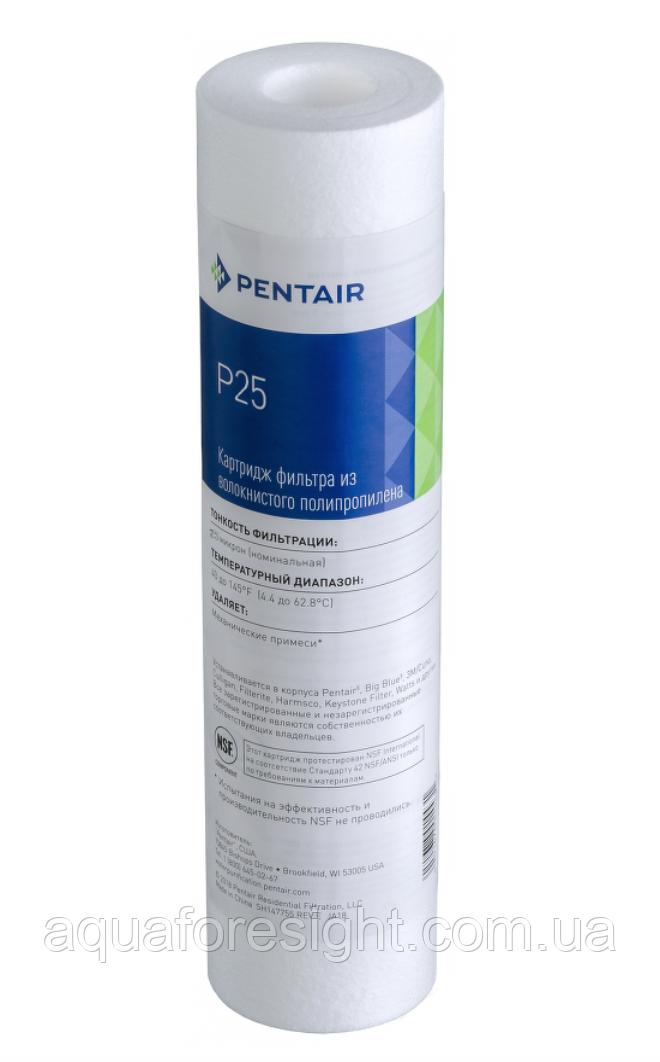 Картридж зі спіненого поліпропілену Pentek P-25