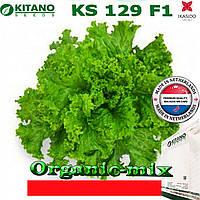 Салат KS 129 F1 ТМ KITANO SEEDS (Голландия) проф. пакет 5 грамм
