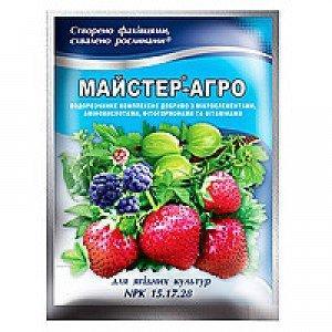 Удобрение MASTER для ягодных культур 100 гр 10 шт