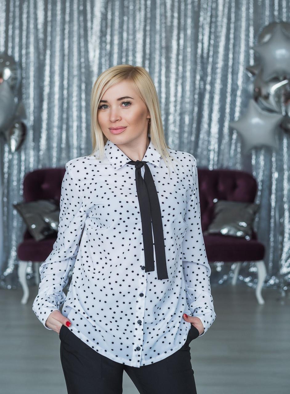 Женская блузка белый горох