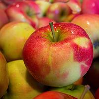 Запеченные яблоки с орехом пекан