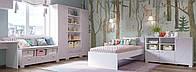 Комплект подростковой мебели  Х-Скаут-6 розовый мат
