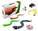 Змея с пультом управления ZF Rattle snake (коричневая), фото 4