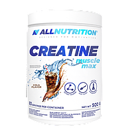 Creatine Muscle Max All Nutrition (500 гр.)