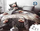 Комплект постельного белья Микроволокно HXDD-829 M&M 8110 Коричневый, Бежевый, фото 2