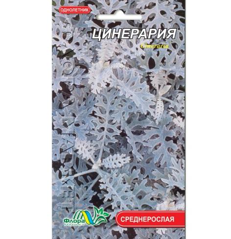 Цинерария, многолетнее растение, семена цветы 0.1г