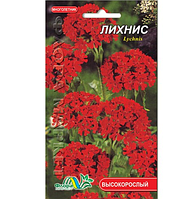 Лихнис Зорька, многолетнее растение, семена цветы 0.1г