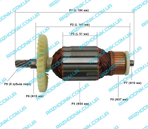 Якорь на торцовочную пилу DWT KGS18-255 P, фото 2