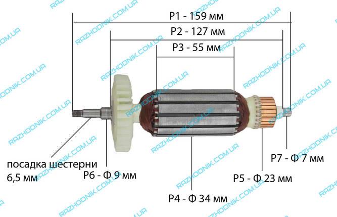 Якорь на болгарку Vorskla ПМЗ 1050/125, Ворскла ПМЗ 1050/125 E, фото 2