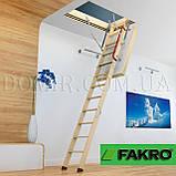 Горищні сходи FAKRO, фото 7