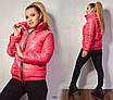 Куртка короткая стойка весна 100 синтепон плащевка 48-50,52-54,56-58, фото 4