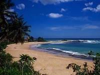 Тур в Шри-Ланку «Горящие туры в Шри-Ланку»