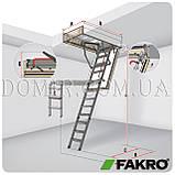 Горищні сходи FAKRO, фото 5