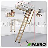 Горищні сходи FAKRO, фото 4
