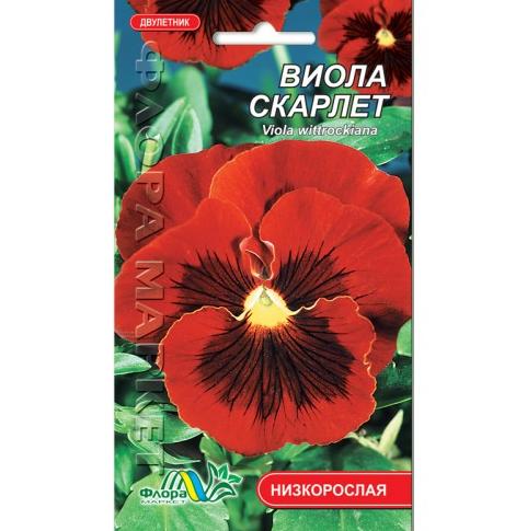 Виола Скарлет, двулетнее растение, семена цветы 0.05 г