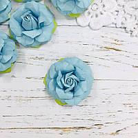Роза голубая ДГ 50-55 мм