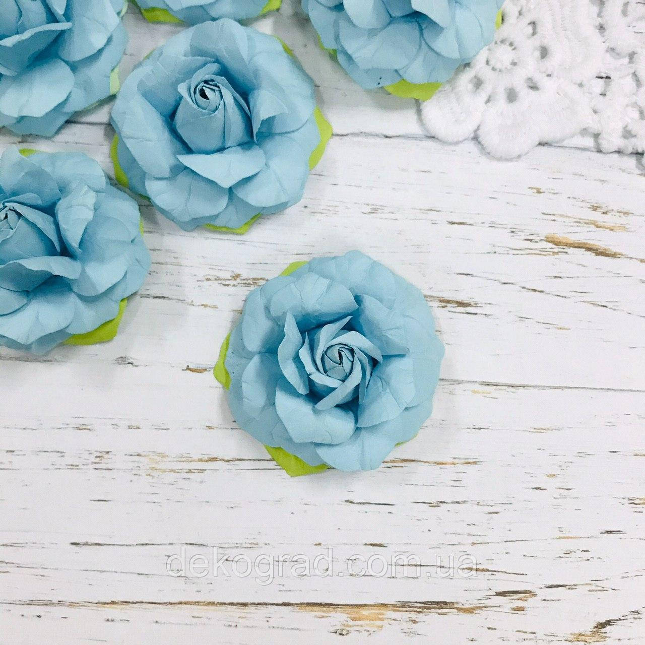 Роза голубая ДГ