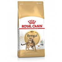 Сухой корм для кошек Royal Canin BENGAL ADULT 10 кг