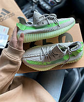 Женские кроссовки в стиле Adidas Yeezy Boost 350 V2 Grey/Green, фото 3