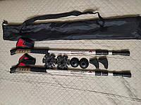 Палки для скандинавської ходьби + чохол + наконечники, для скандинавской ходьбы СРІБНІ, фото 1