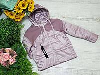 Куртка для девочки осень  весна код CZ2066  размеры на рост от 140 до 164 возраст от 6 лет и старше, фото 1