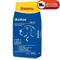 Сухой корм (Josera Josidog active) для взрослых активных собак 18 кг, фото 1