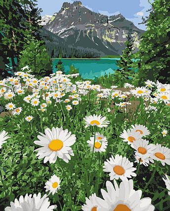 KH2819 Картина-раскраска Красота природы, Без коробки, фото 2
