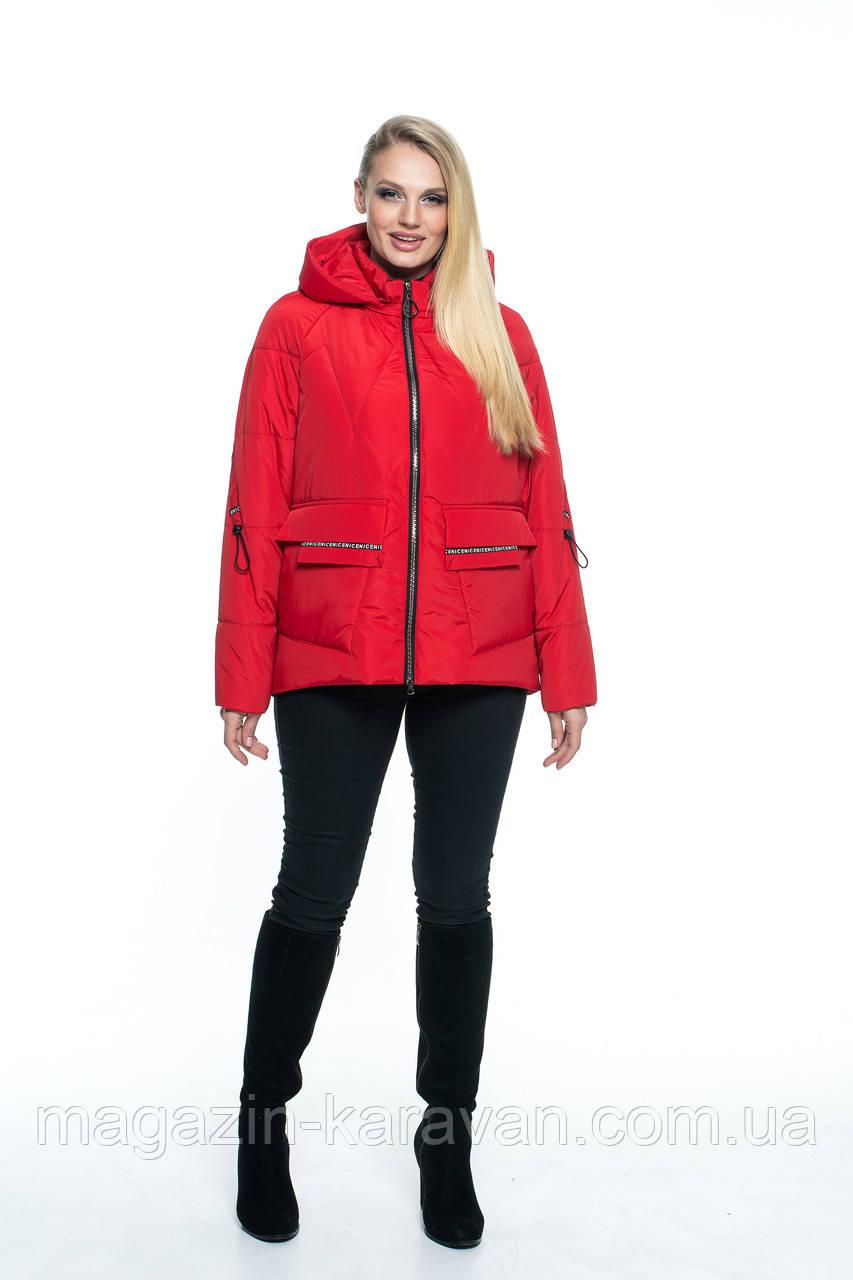 Стильная красная куртка с капюшоном КР103 (44-56)