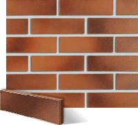 Клинкерная плитка Roben Darwin  Красно-коричневая гладкая