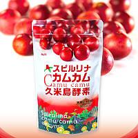 ALGAE Японская спирулина с энзимами растений и ягодами каму-каму, 1000 шт