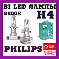 Лампы cветодиодные Philips H4 LED 11342ULWX2 Ultinon +160% 6200K, фото 1