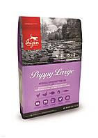 Корм для собак Orijen Puppy Large 11,4 кг