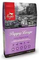 Корм для собак Orijen Puppy Large 6kg