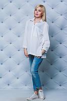 Женская рубашка и блузка в 2020 году: что диктует мода и советуют стилисты