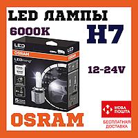 Лампы светодиодные OSRAM 65210CW LEDriving H7 14W 12-24V 6000K
