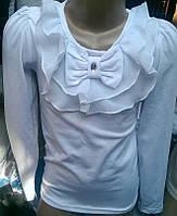 Школьная белая блузка из трикотажа с длинным рукавом.