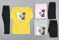 Комплект для девочек Seagull оптом, 4-12 лет. Артикул: CSQ52462, фото 1