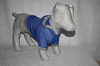 Блайзер куртка літня для собаки Літо, фото 1