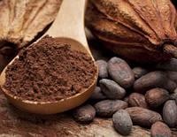О качестве какао: что нужно знать?