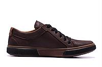 Мужские кожаные кеды Levis Chocolate Classic коричневые, фото 1