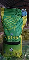 Семена кукурузы НС-2922  новинка