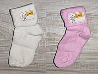 Носки для новорожденного Турция,хлопок  6,9,12 мес цвета.