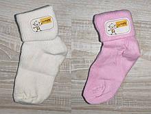 Шкарпетки для новонародженого Туреччина,бавовна 6,9,12 міс кольору.