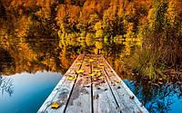 Осенний клёв