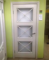 Двери Белоруссии Адант ПО оливка, фото 3